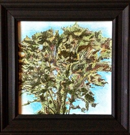 Tree Study - 2012 Sharpie and Colored Pencil