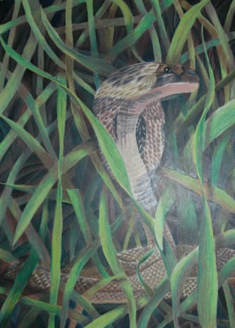 Snake - 2004 Oil Pastels and Colored Pencil