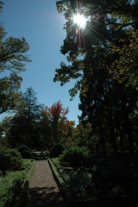 Path at Bartlet Arboretum