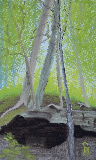 Where Trees Grow 4 x 6 pastel painting on watercolor paper, June 2016