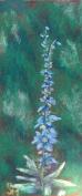 Blue flowers, 4x11, July 2016