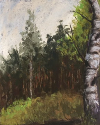 Western Pennsylvania Woods, 5 x 7, pastel painting, October 2017