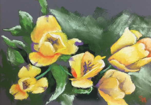 Mom's Tulips, 7 x 5, pastel painting, October 2017