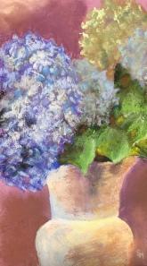 Hydrangeas, 7 x 12, pastel painting, November 2017