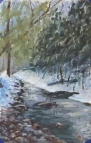 Shull Run, 4x5, January 2017