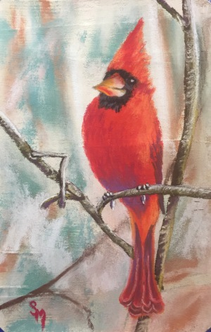 Cardinal, 5x7, January 2017