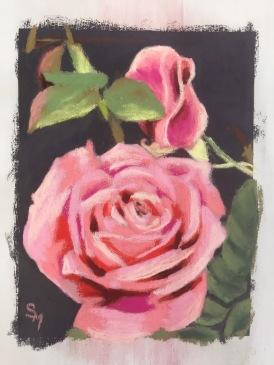 Roses 1, 6.5 x 5, pastel, February 2017