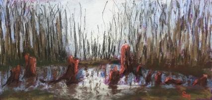 Dismal Swamp, 6 x 12, soft chalk pastel, June 2017