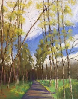 Allegheny Trail, 16 x 20, pastel painting, June 2017