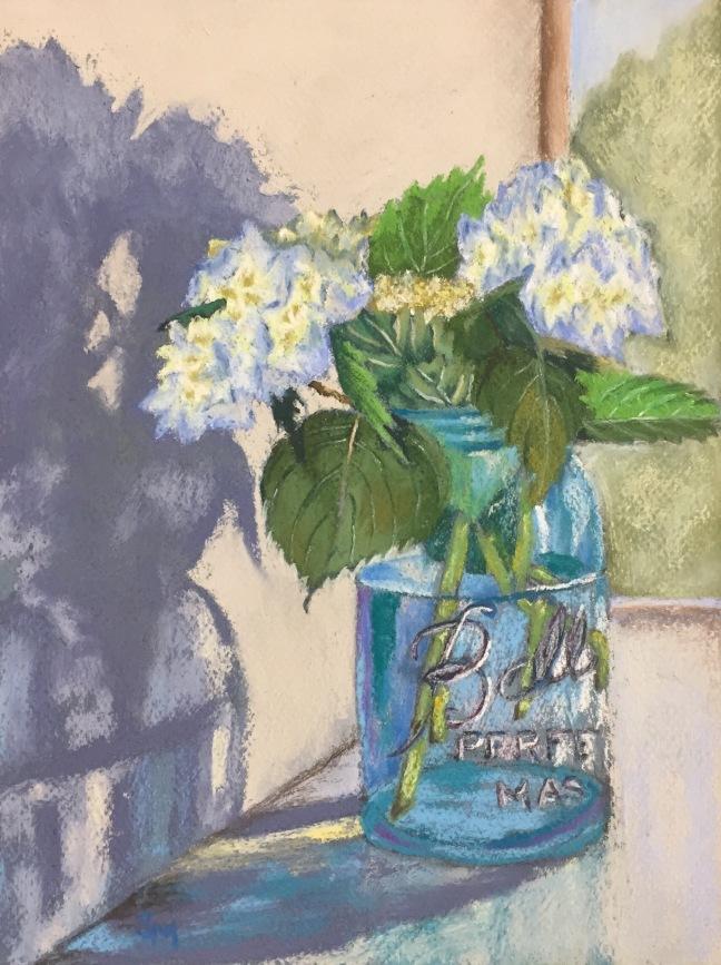Hydrangea, 9 x 12, pastel painting, June 2017