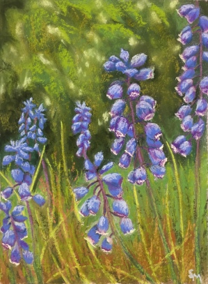 Blue Hyacinth, 9 x 12, pastel painting, July 2017