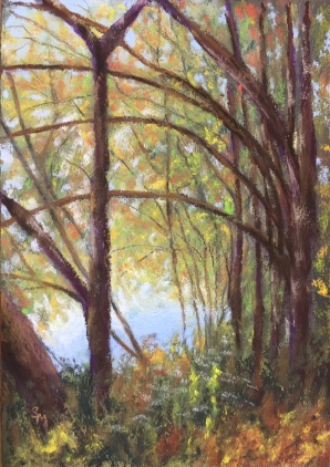 Autumn View, 6 x 9, pastel painting, August 2017