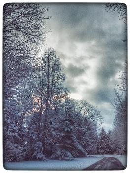 January Blue II, 2018