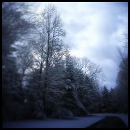 January Blue, 2018