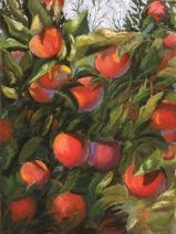 'Just Peachy' 16x20 September 2018